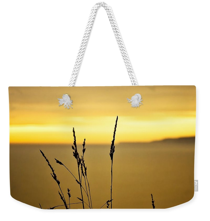 Art Weekender Tote Bag featuring the photograph Grass by Svetlana Sewell