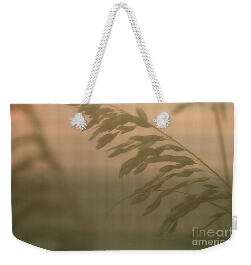Green Weekender Tote Bag featuring the photograph Grasses And Mist by Nadine Rippelmeyer