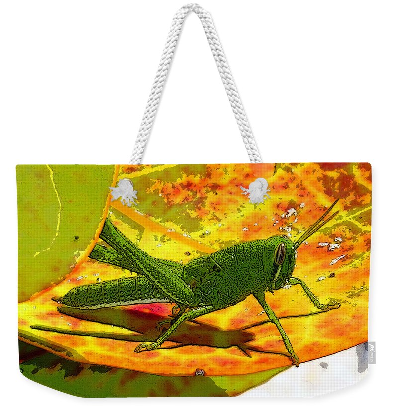 Art Weekender Tote Bag featuring the painting Grasshopper by David Lee Thompson