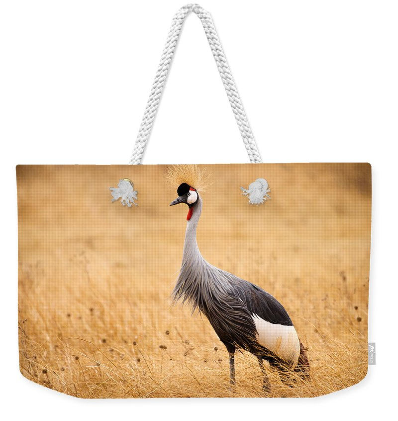 3scape Photos Weekender Tote Bag featuring the photograph Gray Crowned Crane by Adam Romanowicz