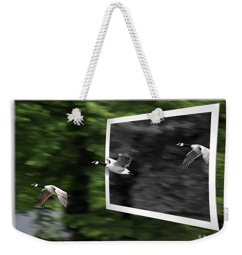 2d Weekender Tote Bag featuring the photograph Grayscale To Color by Brian Wallace