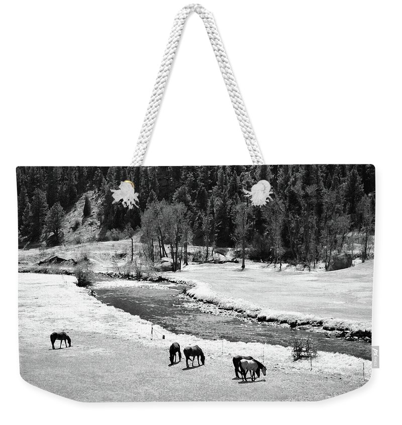 Colorado Weekender Tote Bag featuring the mixed media Grazing Bw by Angelina Tamez