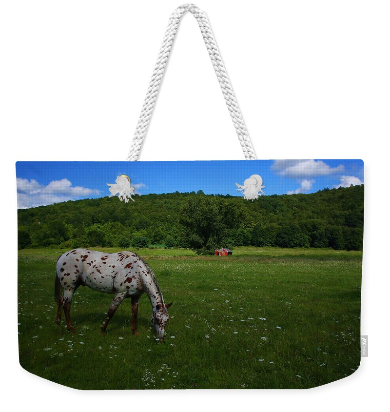 Landscape Weekender Tote Bag featuring the photograph Grazing by Karol Livote