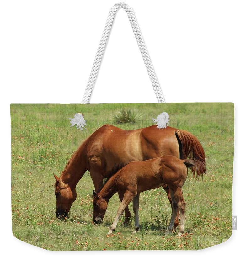 Horse Weekender Tote Bag featuring the photograph Grazing Together by Brenda Ackerman