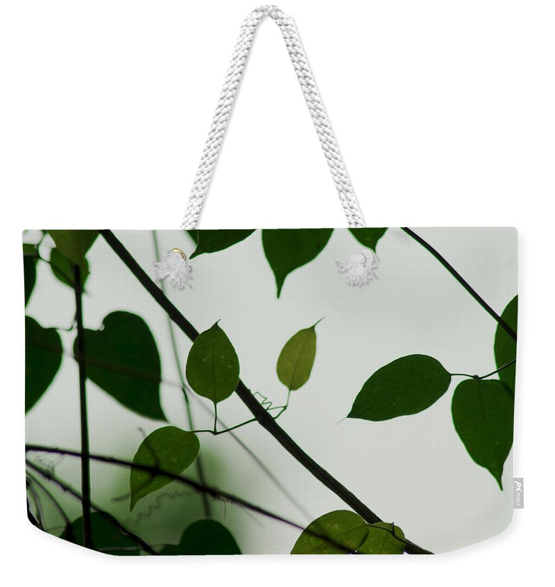 Green Weekender Tote Bag featuring the photograph Green Leaves 2 by Totto Ponce