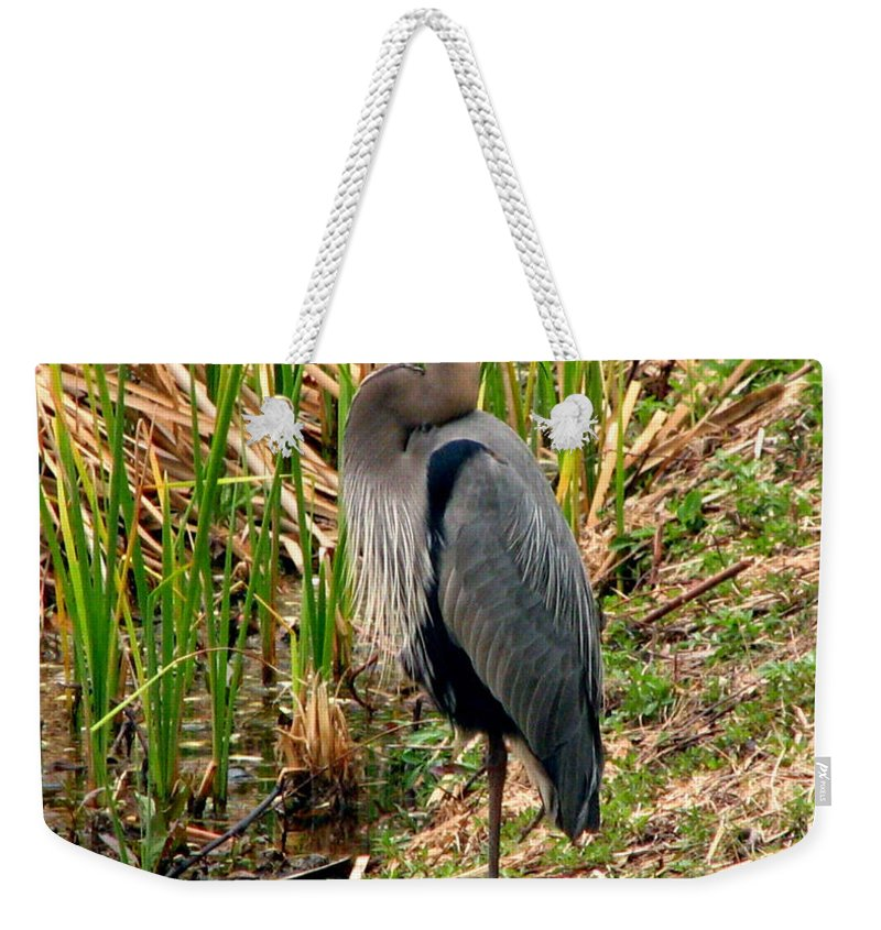 Bird Weekender Tote Bag featuring the photograph Great Blue Heron 2 by J M Farris Photography