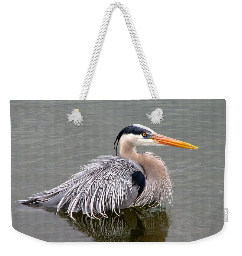 Bird Weekender Tote Bag featuring the photograph Great Blue Heron 3 by J M Farris Photography