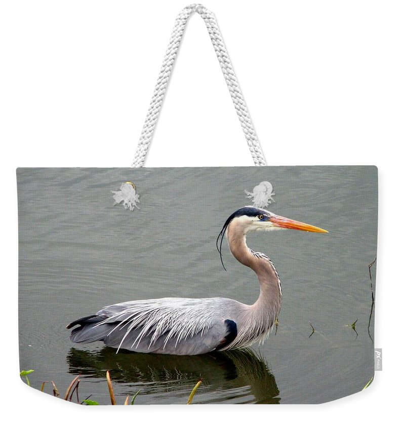 Bird Weekender Tote Bag featuring the photograph Great Blue Heron 4 by J M Farris Photography
