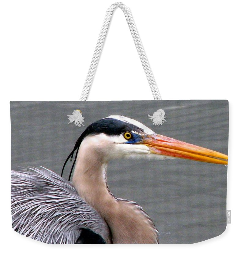 Bird Weekender Tote Bag featuring the photograph Great Blue Heron 5 by J M Farris Photography