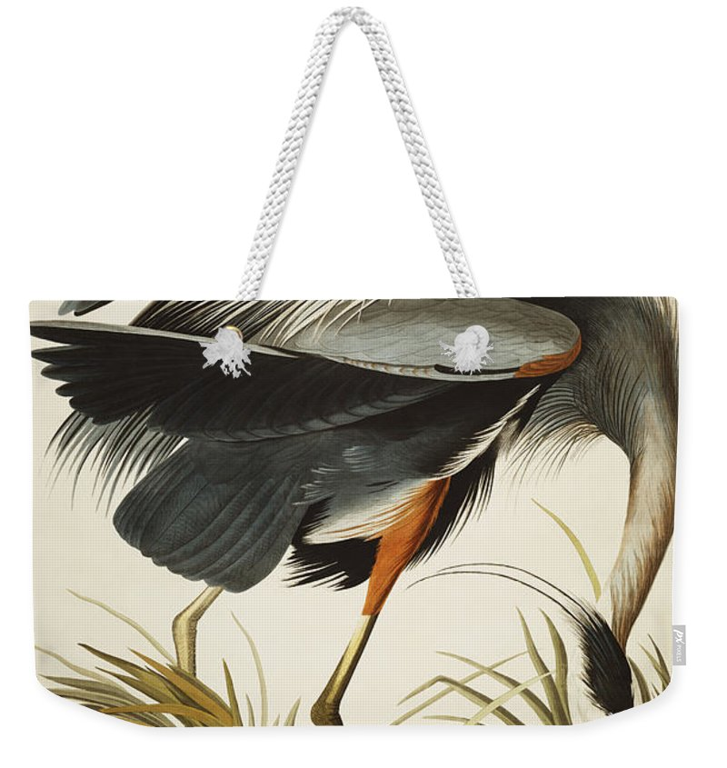 Great Blue Heron (ardea Herodias) Plate Ccxi From 'the Birds Of America' (aquatint & Engraving With Hand-colouring) By John James Audubon (1785-1851) Weekender Tote Bag featuring the drawing Great Blue Heron by John James Audubon