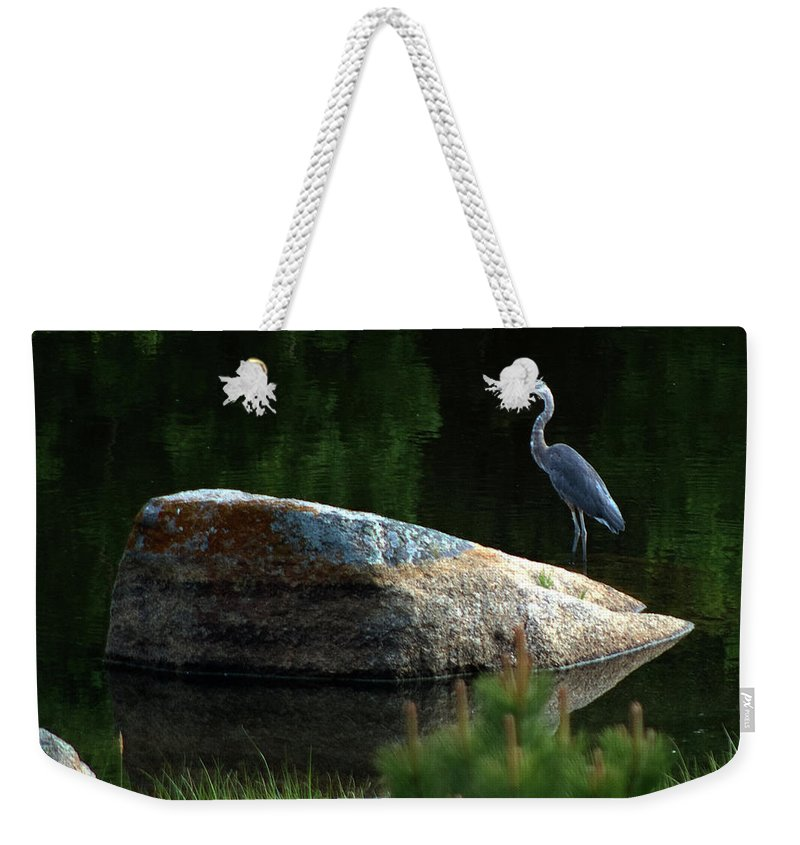 Heron Weekender Tote Bag featuring the photograph Great Blue Heron by Mark Ivins