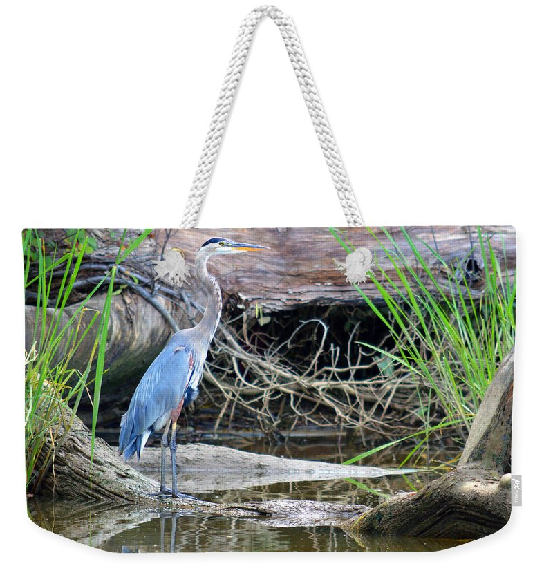 Great Blue Heron Weekender Tote Bag featuring the photograph Great Blue Heron by Nancy Comley
