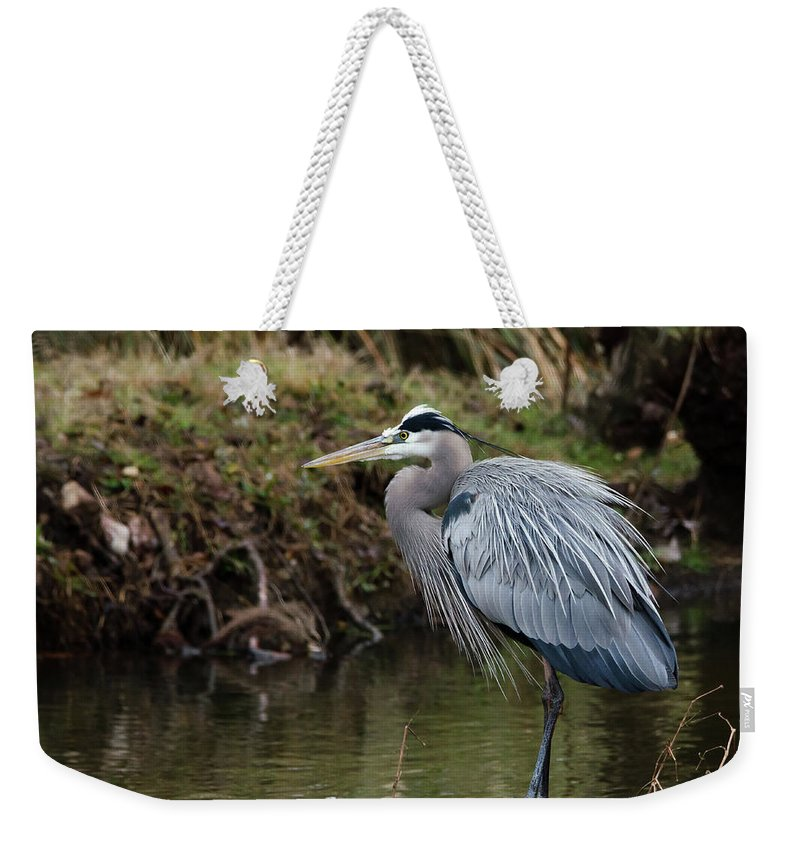 Hero Weekender Tote Bag featuring the photograph Great Blue Heron On The Watch by George Randy Bass