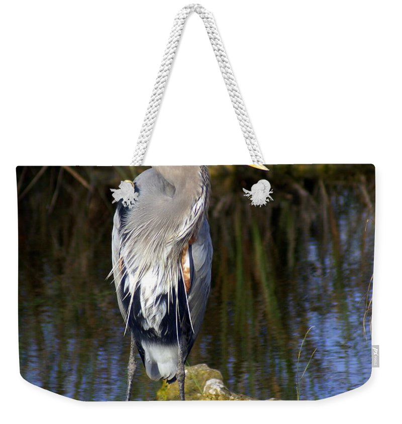 Great Blue Heron Weekender Tote Bag featuring the photograph Great Blue by Marty Koch