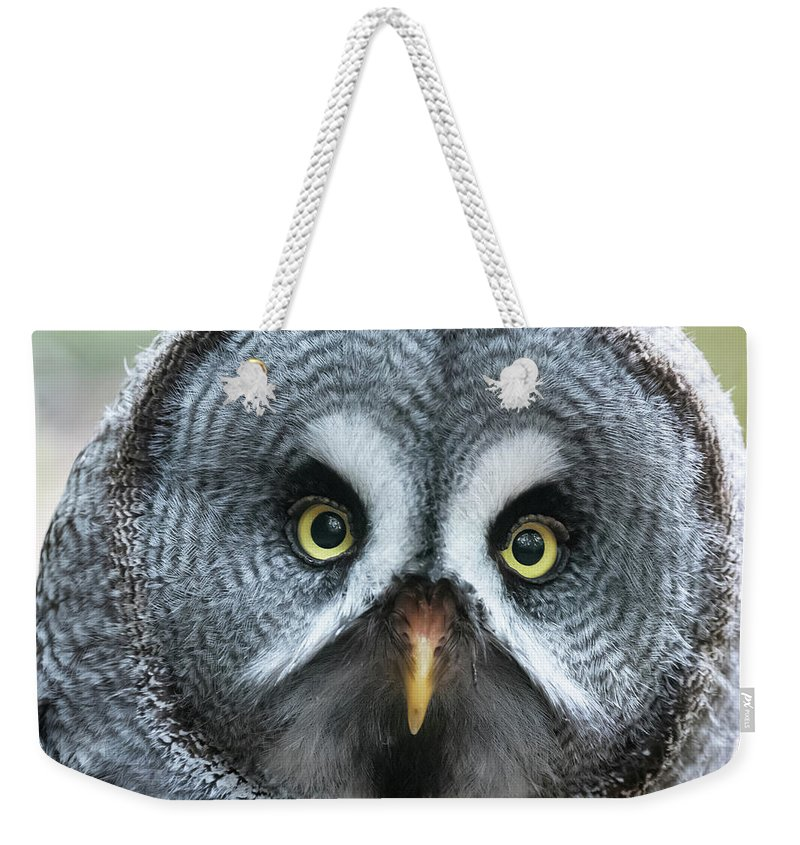 Owl Weekender Tote Bag featuring the photograph Great Grey Owl Closeup by Jane Rix