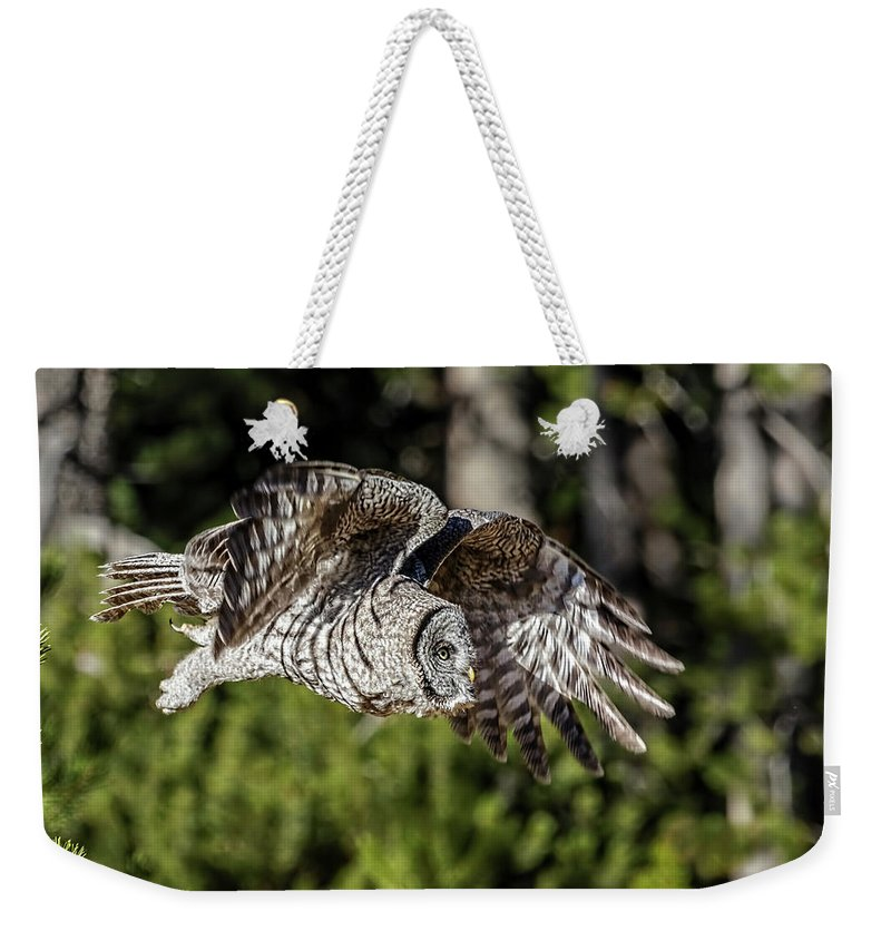 Great Grey Owl Weekender Tote Bag featuring the photograph Great Grey Owl by Wes and Dotty Weber