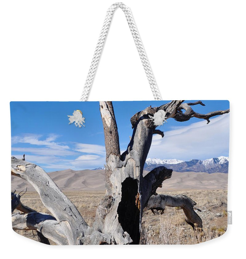 Great Sand Dunes National Park Weekender Tote Bag featuring the photograph Great Sand Dunes National Park Fallen Tree Portrait by Kyle Hanson