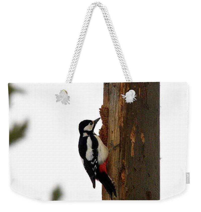 Lehtokukka Weekender Tote Bag featuring the photograph Great Spotted Woodpecker by Jouko Lehto