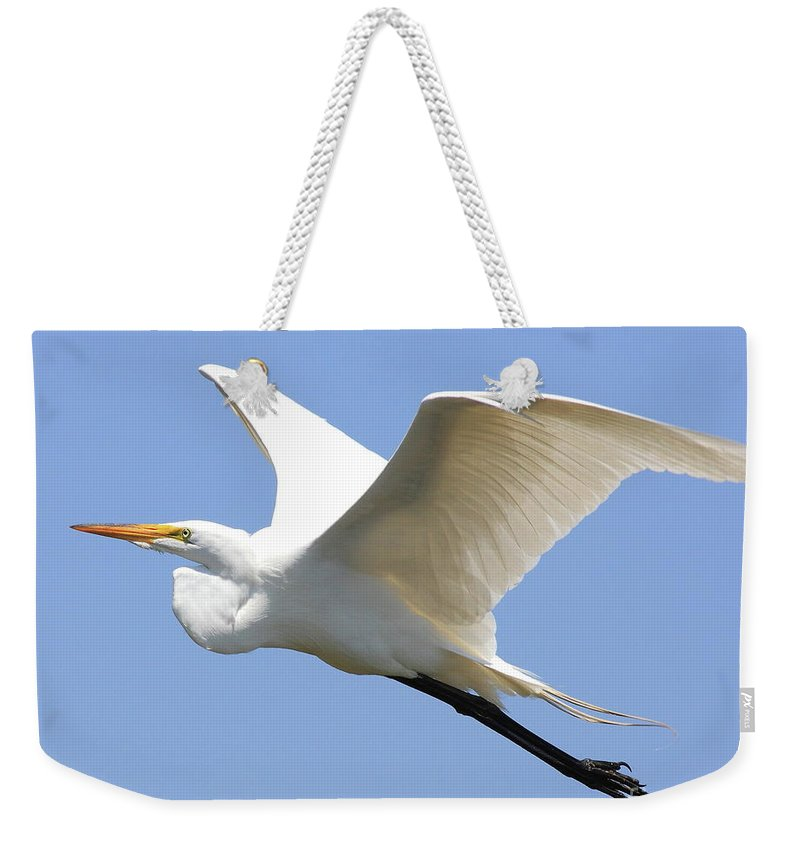 Bird Weekender Tote Bag featuring the photograph Great White Egret In Flight . 40d6845 by Wingsdomain Art and Photography