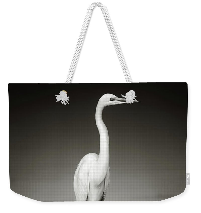 Egret Weekender Tote Bag featuring the photograph Great White Egret On Hippo by Johan Swanepoel