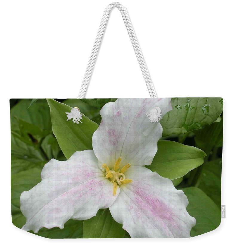 Trillium Weekender Tote Bag featuring the photograph Great White Trillium by Nelson Strong