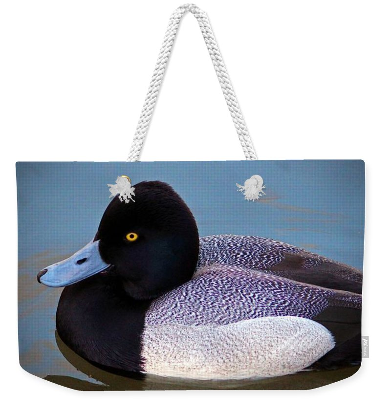 Duck Weekender Tote Bag featuring the photograph Greater Scaup by Cynthia Guinn