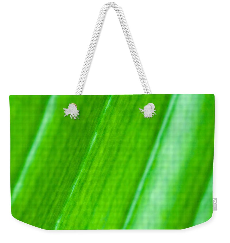 Abstract Weekender Tote Bag featuring the photograph Green Abyss by Sebastian Musial