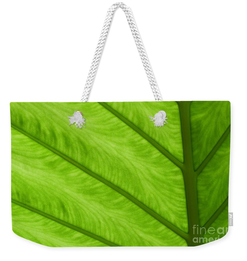 Leaf Weekender Tote Bag featuring the photograph Green by Ann Horn