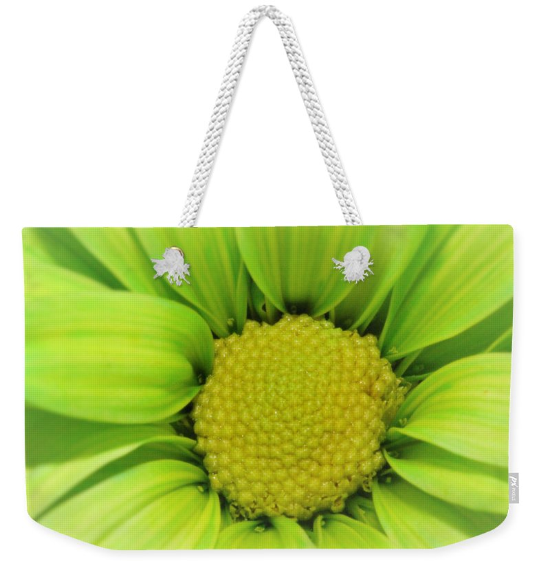 Green Weekender Tote Bag featuring the photograph Green Daisy Photograph by Marnie Patchett