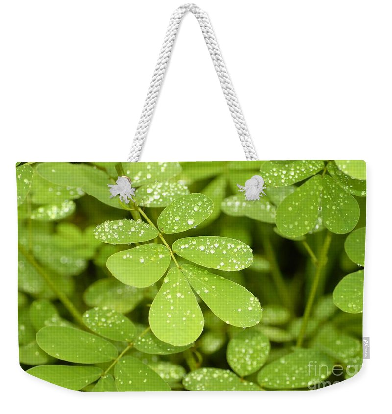 Green Weekender Tote Bag featuring the photograph Green by David Lee Thompson