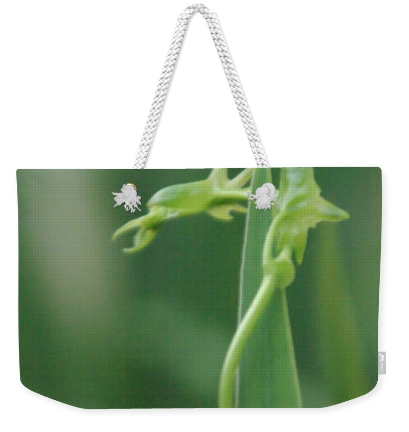 Dragon Weekender Tote Bag featuring the photograph Green Dragon by Donna Blackhall
