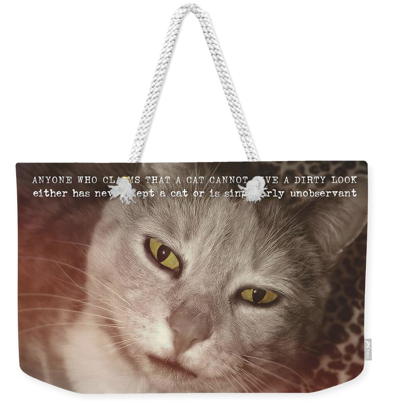 Cat Weekender Tote Bag featuring the photograph Green Eyed Glare Quote by JAMART Photography
