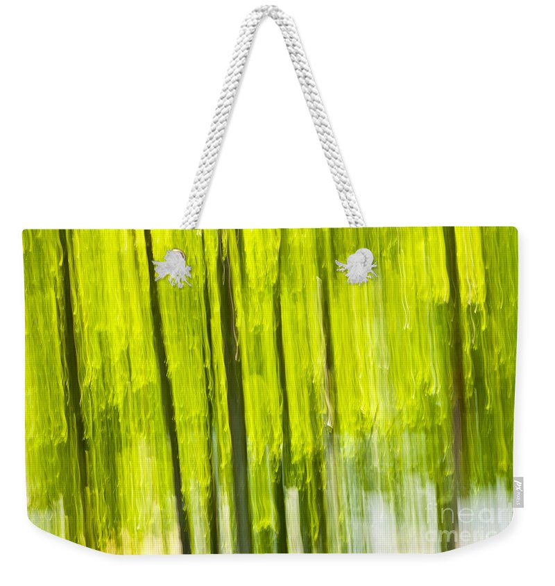 Abstract Weekender Tote Bag featuring the photograph Green Forest Abstract by Elena Elisseeva