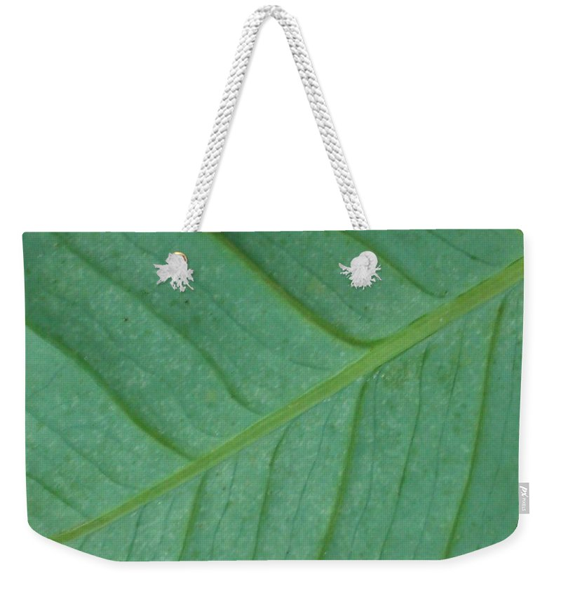 Green Weekender Tote Bag featuring the photograph Green Leaf 1 by Jennifer Bright