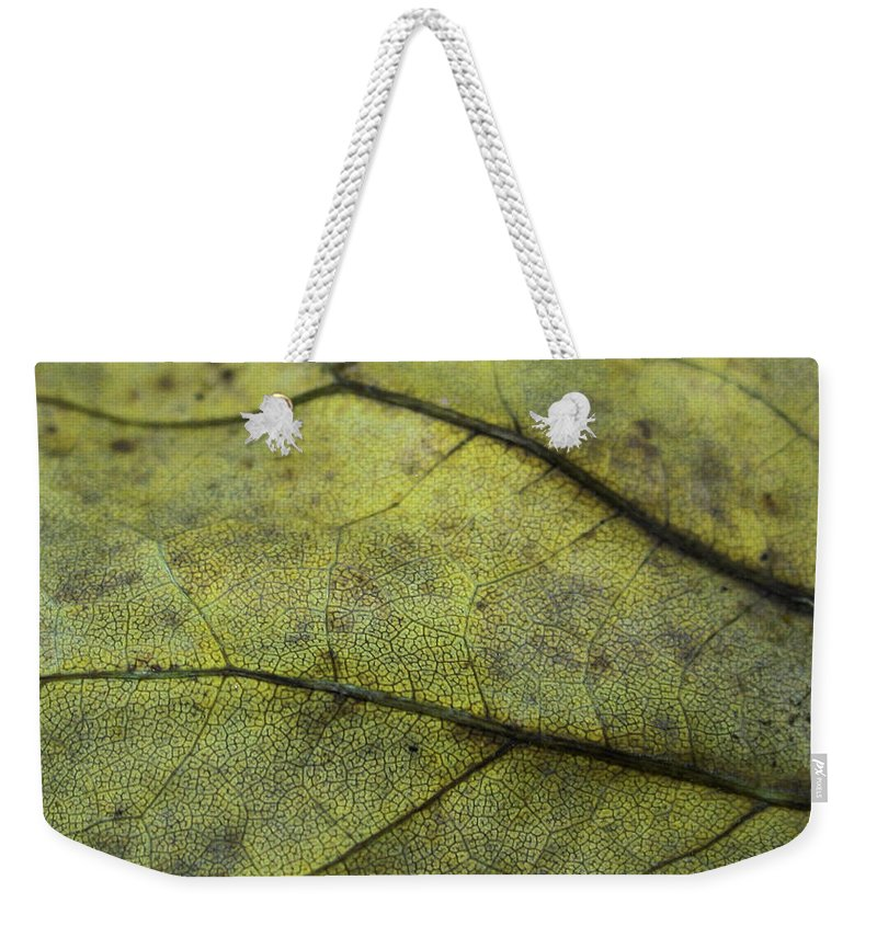 Nature Weekender Tote Bag featuring the photograph Green Leaf by Linda Sannuti