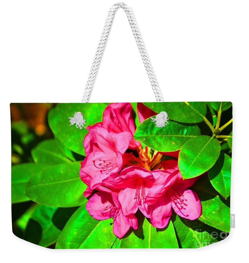 Flower Weekender Tote Bag featuring the photograph Green Leafs Of Pink by Jost Houk