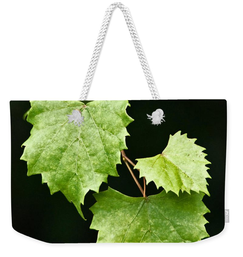 Flora Weekender Tote Bag featuring the photograph Green Leaves by Christopher Holmes