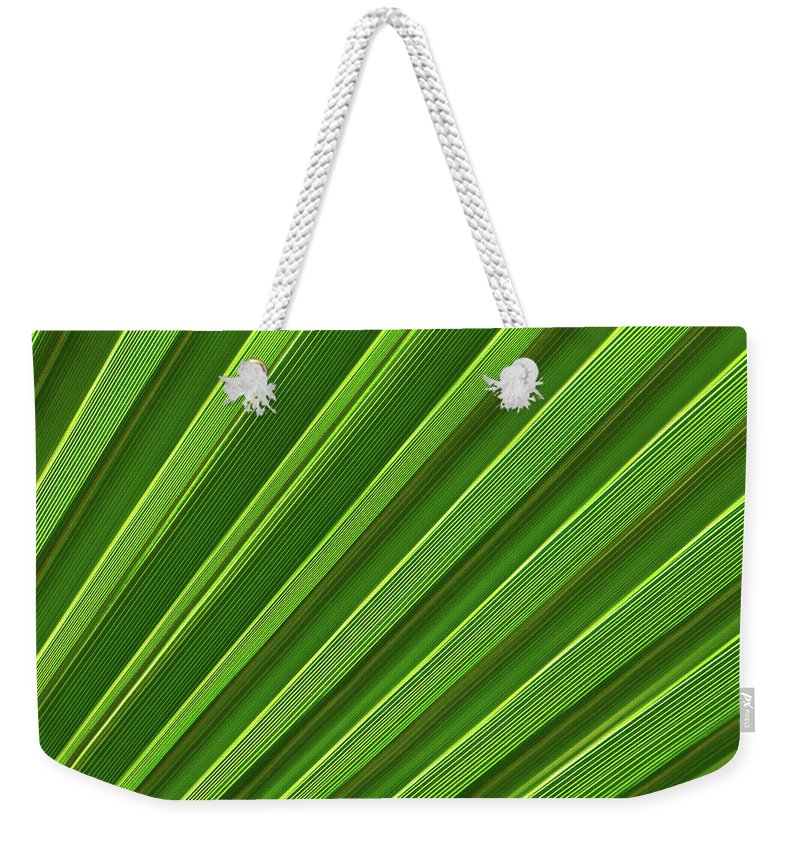 Abstract Weekender Tote Bag featuring the photograph Green Palm Leaf by Lukasz Szczepanski