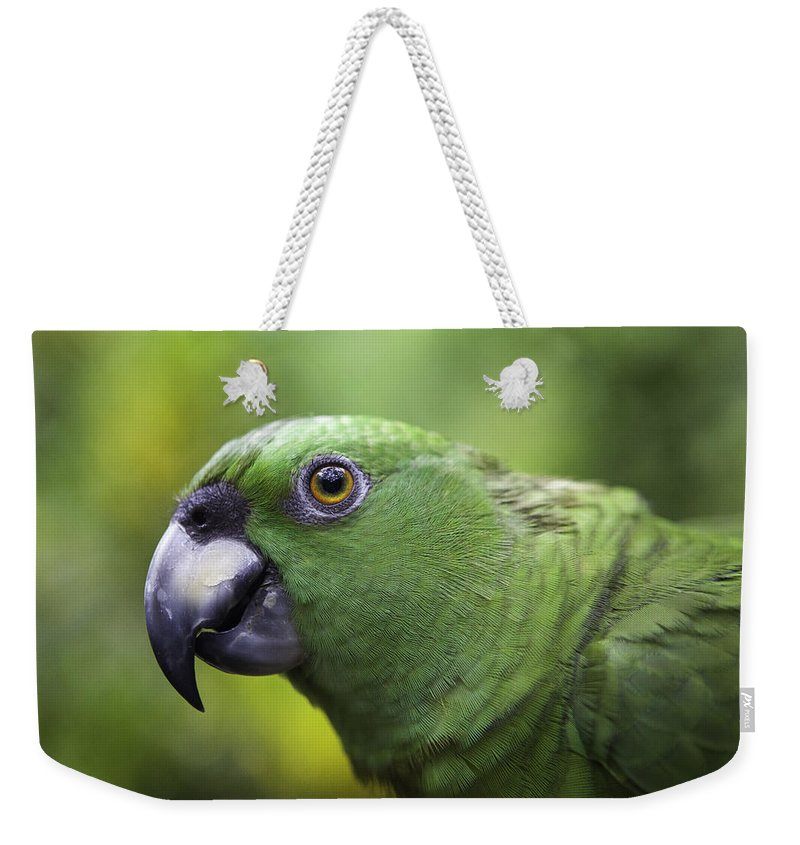 2013 Weekender Tote Bag featuring the photograph Green Parrot by Marie Elise Mathieu