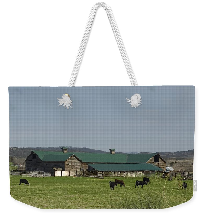 Green Roof Weekender Tote Bag featuring the photograph Green Roof by Sara Stevenson