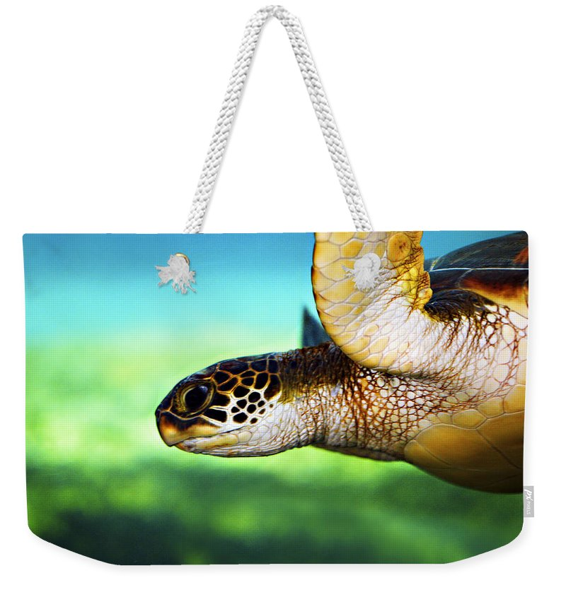 Green Weekender Tote Bag featuring the photograph Green Sea Turtle by Marilyn Hunt