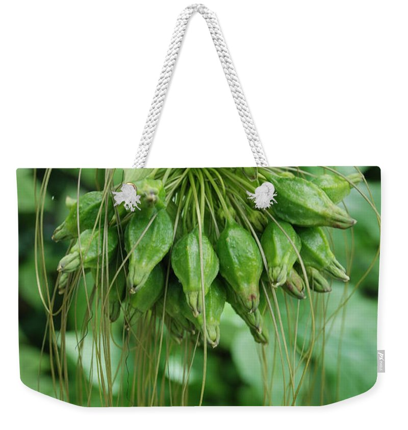Macro Weekender Tote Bag featuring the photograph Green Vines by Rob Hans