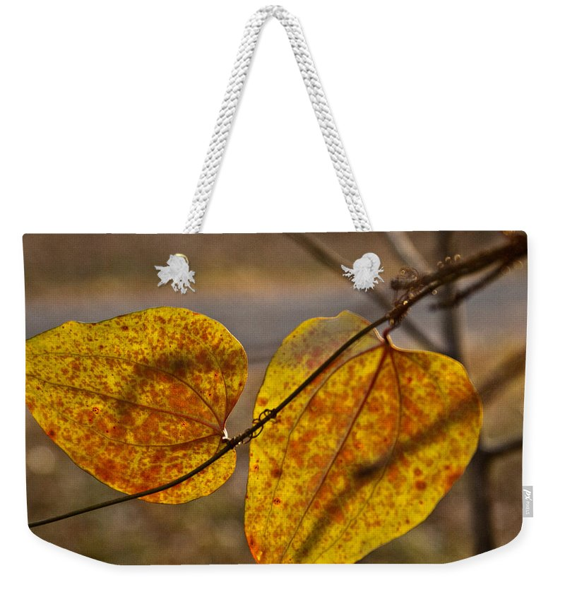Greenbriar Weekender Tote Bag featuring the photograph Greenbrier Glow by Douglas Barnett