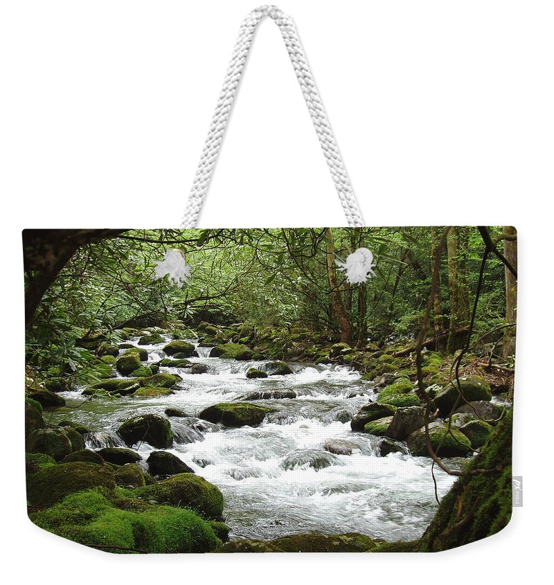 Smoky Mountains Weekender Tote Bag featuring the photograph Greenbrier River Scene 2 by Nancy Mueller