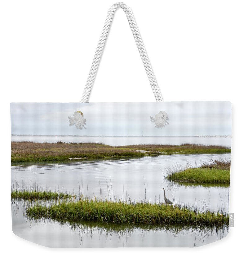 Avian Weekender Tote Bag featuring the photograph Grey Heron #1 by Tim Bond