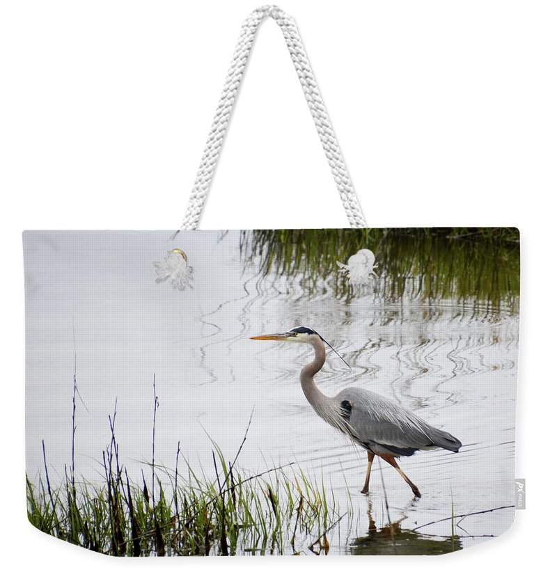Avian Weekender Tote Bag featuring the photograph Grey Heron #3 by Tim Bond