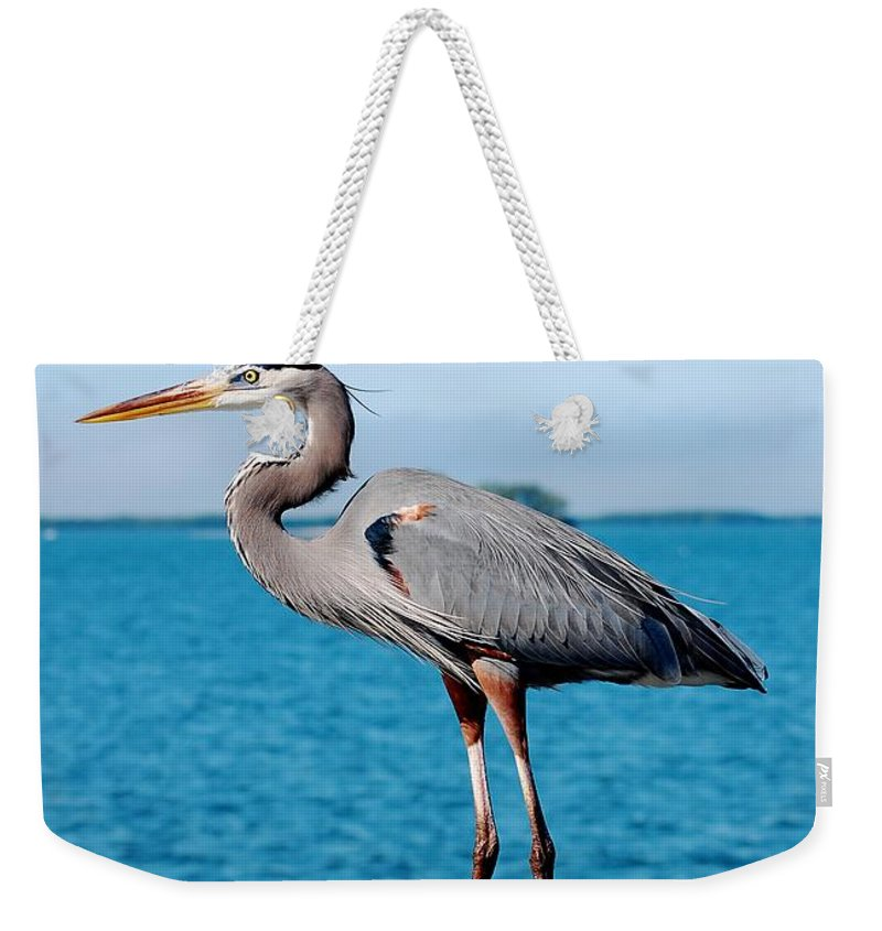 Grey Heron Weekender Tote Bag featuring the photograph Grey Heron by Robert Meanor