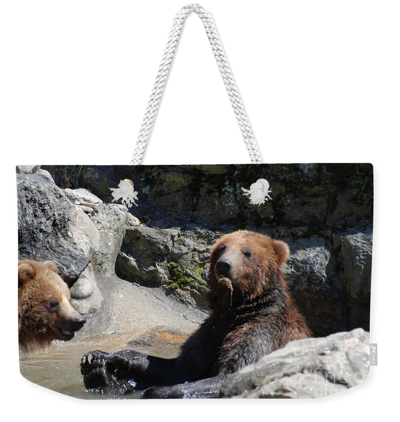 Grizzly Weekender Tote Bag featuring the photograph Grizzlies Snacking On Things They Find In A River by DejaVu Designs