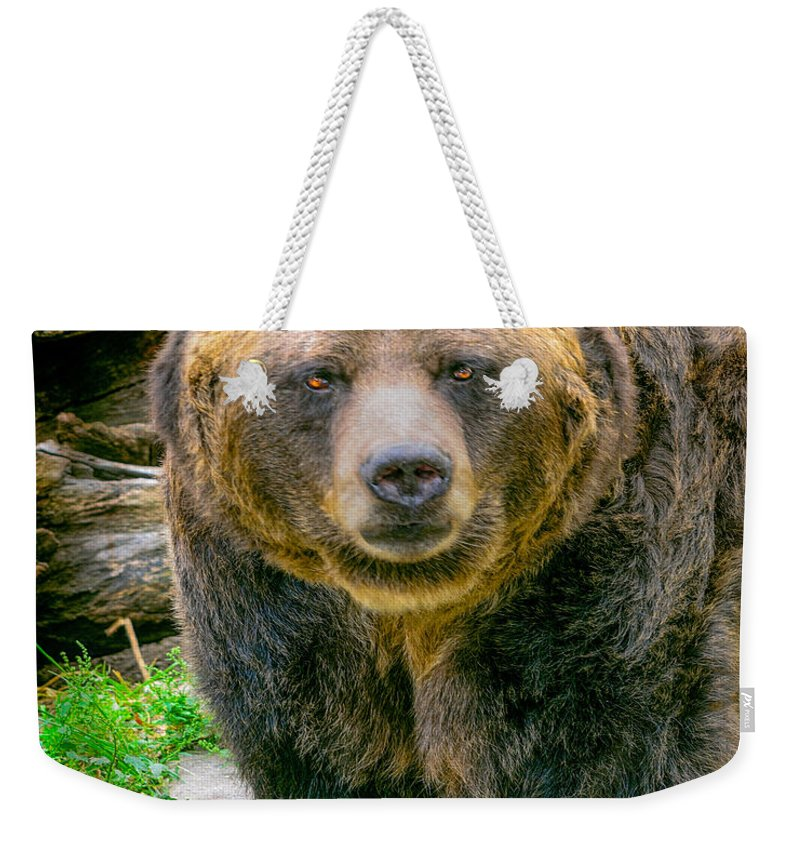 Nature Wear Weekender Tote Bag featuring the photograph Grizzly Bear Nature Girl  by LeeAnn McLaneGoetz McLaneGoetzStudioLLCcom