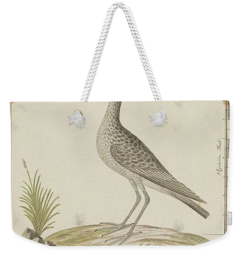 Groenpootruiter (tringa Nebularia) Weekender Tote Bag featuring the painting Groenpootruiter by Robert Jacob